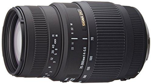 Sigma 70-300/4-5.6 Macro DL - Objetivo para Canon (distancia focal 70-300mm, apertura f/4-5,6, macro, diámetro: 58mm) color negro