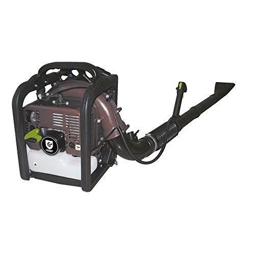 Groway GBL-63 - Soplador de hojas a gasolina 65.5cc motor 2T