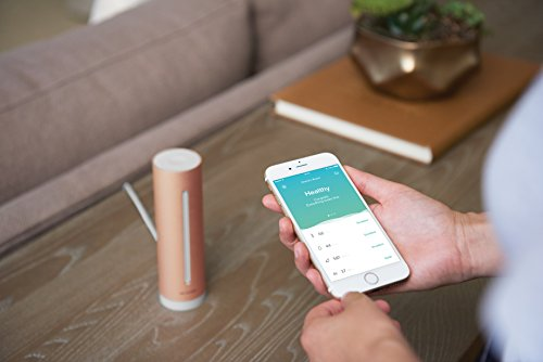 Netatmo-Capteur-de-qualit-de-lair-intrieur-Connect-temprature-humidit-Bruit-CO2