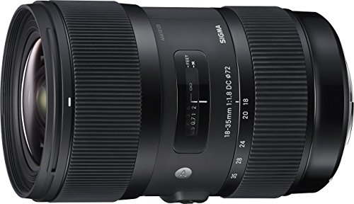 Sigma 18-35mm F1,8 DC HSM - Objetivo para cámaras Canon (IP Camera, 17/12, Estándar, 78 mm, 72 mm, 121 mm), negro