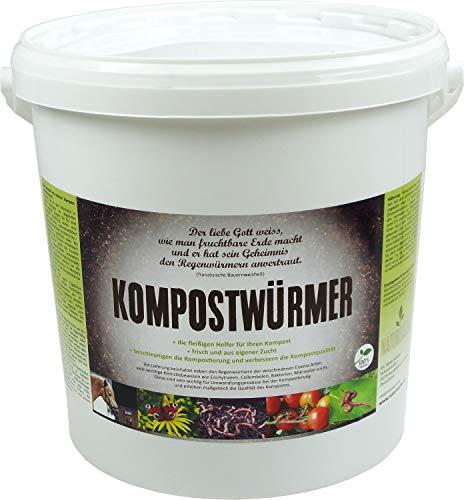 natursache.de KOMPOSTWÜRMER Regenwürmer lebend kaufen - effektive Kompostierung von Bioabfall im Schnellkomposter, Thermokomposter, Wurmkiste, Wurmkomposter, Komposthaufen und Komposttoilette