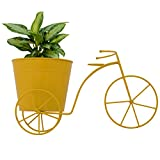 CINAGRO - Cycle Desk Planter, Plant Holder (Large Size)- Yellow Color
