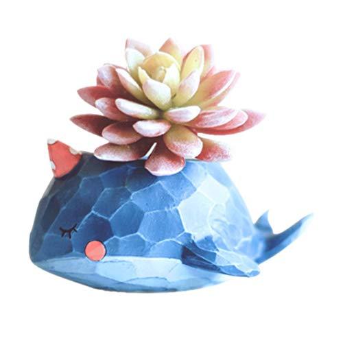LouiseEvel215 Macetas de Plantas suculentas Nuevo diseño Macetero para macetas de Plantas Bonsai Suculentas y Cactus Forma Linda Isla de Whale
