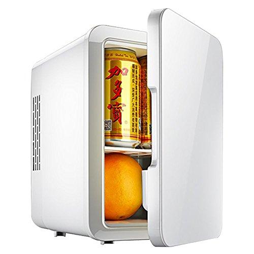 LE Mini frigoriferi per auto da 4L Piccola porta singola per cella di refrigerazione bianca Singola...