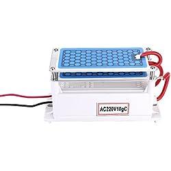 KKmoon Generatore di Ozono Portatile 10g / h Ozonizzatore di Acqua Integrato Doppio per la Fabbrica Chimica