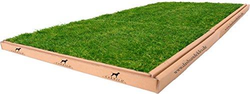CARNILO Hundeklo aus echtem Rasen, XL, Stubenrein, Hundetoilette, Alter Hund