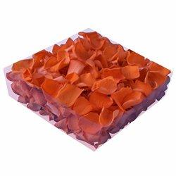 floristikvergleich.de 1l Liter Echte Rosenblätter orange konserviert – Streukörbchen Hochzeit – Dekoration