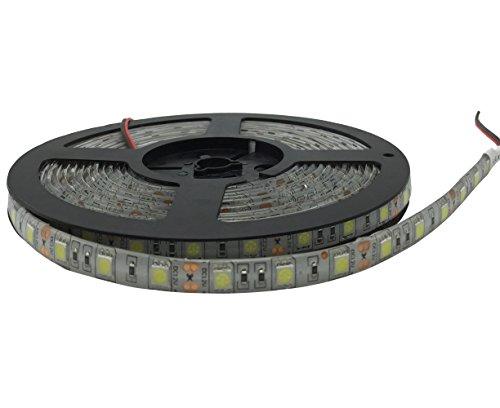 YXH Striscia LED (5m) bianco freddo 12v illuminazione led (Cucina, Store, Ufficio, Natale) Decorazione interna ed esterna , flessibile impermeabile ( 16.4ft SMD 5050, 6000 K)