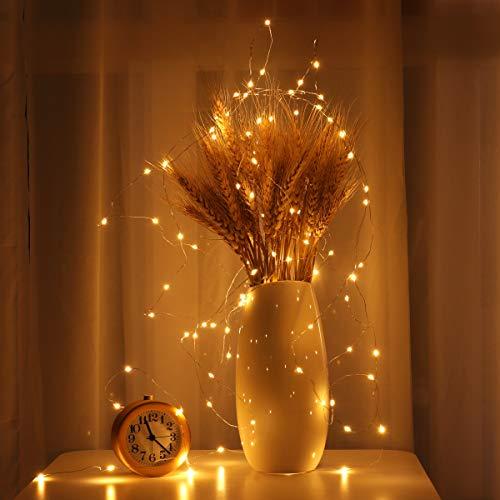 LEDMOMO Luce della corda di lucine, 33ft / 10m 100 LED impermeabile filo luci per giardino, Patio,...