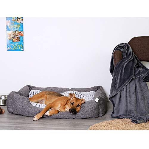 Dibea Cuccia letto per cani chiazzato con cuscino reversibile, Grigio