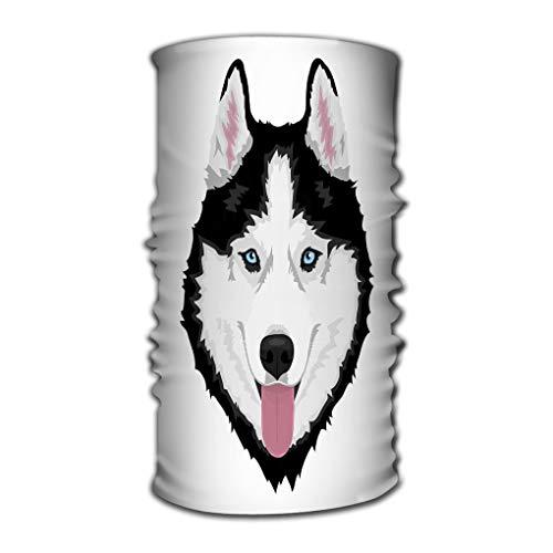 ctf6hfv5 Headbands Elastic Turban Head Wrap Stylish Hair Band Siberian Husky Dog Black White Blue...