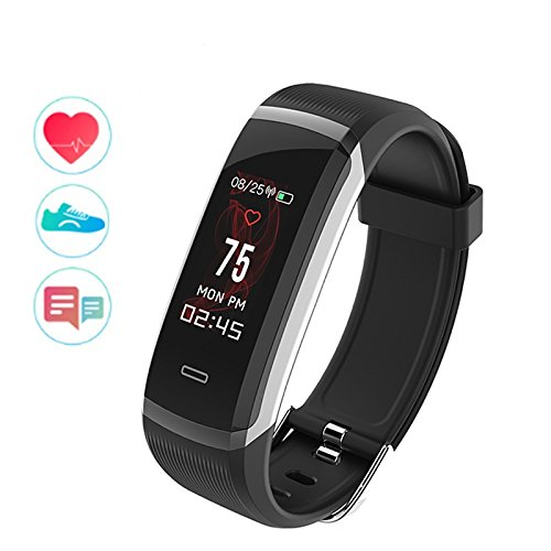 Wearfit GT101 Color Screen Waterproof Smart Band (Black)