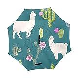 Paraguas Originales De Doble Capa Plegables y Resistente Al Viento Verde Oscuro Cactus