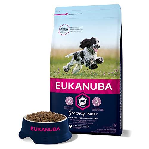 Eukanuba, Cibo Secco per Cani Cuccioli, Taglia Media, 1-12 Mesi, Crocchette con Pollo, 3 Kg