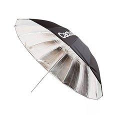 Cactus CA0108 - Paraguas de Fibra de Vidrio, Plata Reflector 100 cm
