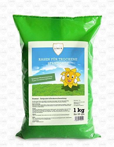Linsor Rasen für trockene Standorte   1 kg Qualitätsrasen mit guter Hitze- und Trockenverträglichkeit   Samenmischung aus widerstandsfähigen Rasengräsern