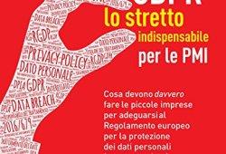 scaricare GDPR. Lo stretto indispensabile per le PMI: Cosa devono davvero fare le piccole imprese per adeguarsi al Regolamento europeo per la protezione dei dati personali (RGPD 2016/679) PDF gratis italiano