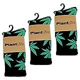 3x PlantLife Calzini unisex modello marijuana in dimensione universale colori 3x nero/verde