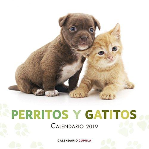 Calendario Perritos y gatitos 2019 (Calendarios y agendas)