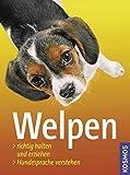 Welpen: Richtig halten und erziehen, Hundesprache verstehen