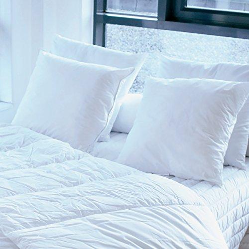 Bleu Câlin Lot de 2 Oreillers Confort 'Alaska' Blancs 65x65 cm OCPI 26