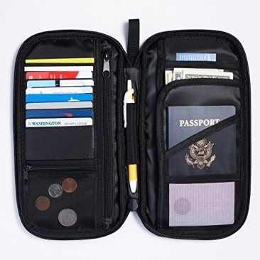 AmazonBasics Black Bag Organizer 3