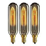 Ampoule Edison t10 E14 tube de 220...