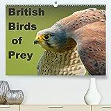 British Birds of Prey(Premium, hochwertiger DIN A2 Wandkalender 2020, Kunstdruck in Hochglanz): Birds of Prey found in the United Kingdom (Monthly calendar, 14 pages )
