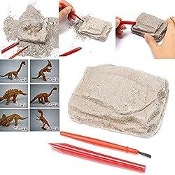 Uniqstore Kit de excavación de Dinosaurios arqueología excavar Esqueleto fósil Regalo de Juguete de niños Halloween en Caja