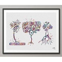 multipolar neurona Watercolor