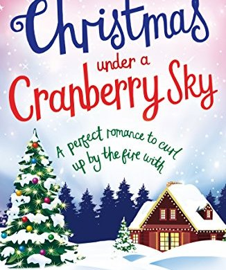 Christmas Under a Cranberry Sky: A perfect romance to curl up by the fire with 20