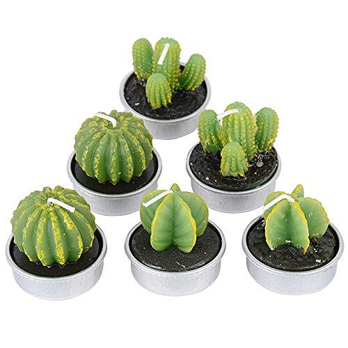 Kaktus test oder vergleich 2018 top 50 produkte - Aufblasbarer kaktus ...
