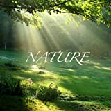 Natur - Weckton