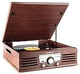 Sunstech PXR3 - Tocadiscos (33 y 45 rpm, USB, FM), color marrón