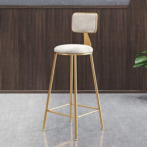 YLCJ Sgabello Sedia Schienale, Tessuto di Ferro Arte seggiolone Morbido Ristorante Reception Bar Sedia Tea Shop Ferro Arte Lounge Chair Altezza 75 cm (Colore: Bianco)