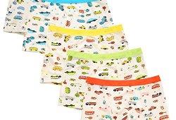*De feuilles Chic-Chic Boxer Slip Lot DE 5 Garçon Bébé Enfant Culotte Pantalon sous-Vêtement en Coton Motif Mignon Voiture 4-6ans Prix