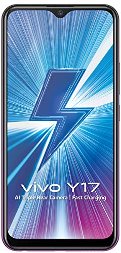 Vivo Y17 (Mystic Purple, 4GB RAM, 128GB Storage) with No Cost EMI/Additional Exchange Offers