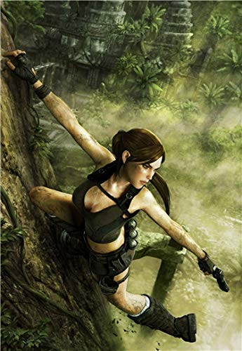XWArtpic Classico Film di Avventura di Hollywood Tomb Raider Movie Cartoon 3D Gioco HD Retro Poster...