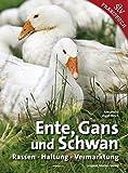 Ente, Gans und Schwan: Rassen ? Haltung ? Vermarktung