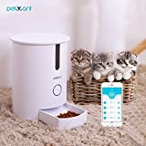 Petwant Conducteur automatique futé d'animal de compagnie chats avec le distributeur sec contrôlé sain d'aliments d'APP contrôlé facile