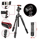 Manfrotto MKBFRA4-BH Kit Befree con Testa a Sfera per Fotocamera e Sacca di...