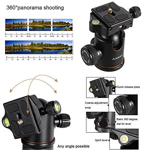 Trípode Andoer Trípode Monópode Monopod Pro para Cámaras de Foto y Video con Cabeza de Bola Ballhead Placa Rápida Liberazación para Canon Nikon Sony Panasonic DSLR