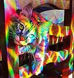 Rainbow Symphony - Atrapaluz en forma de axicon para la ventana
