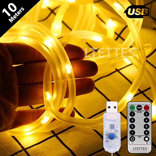 LTETTES Copper String Rope Lights TPE Tube USB Powered Warm White String Lights for Garden,Bedroom, Path, Fence, Stairs, Backyard, Outdoor Decorative with Remote Controller (10 Meters)