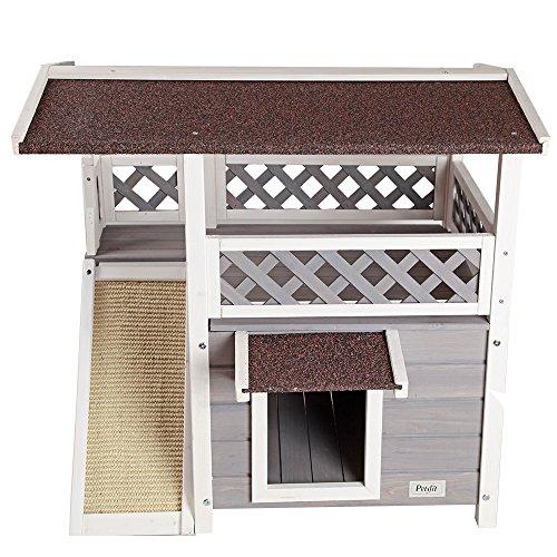 Amazon Cat House Lodge