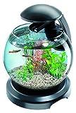 Tetra Cascade Globe Noire - Aquarium pour Poisson...