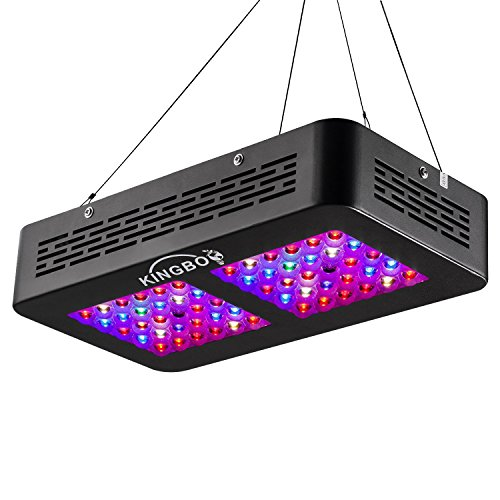 KINGBO Dual Optical Lens-Series 300W LED Grow Light Full Spectrum for Indoor Plants VEG and Bloom?Two Switch, 12-Bands - This is a great alturnative to our 'Best Pick' with all the same great features but just a little smaller and 300w instead of 600 watt making it ideal for smaller grow tents