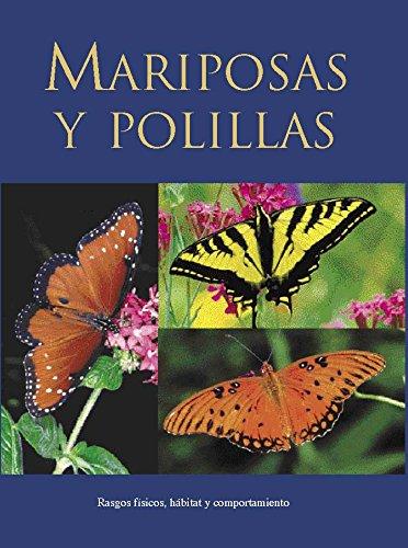 Mariposas y polillas - rasgos fisicos, habitat y comportamiento