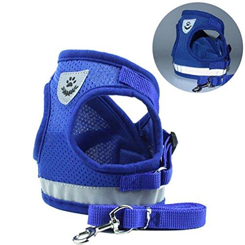 zolimx Ropa para Mascotas Perros, Mascotas Cachorro Perro Suave Malla Caminar Pecho Collar Correa Durable al Aire Libre Chaleco (Azul, L)
