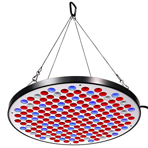 Niello® Reflector 50W LED Pflanzenlampe LED Grow Light Vollspektrum Pflanzenlicht Led Grow Lamp nur 1 cm Dick mit Schalter für Zimmerpflanzen Gemüse und Blumen